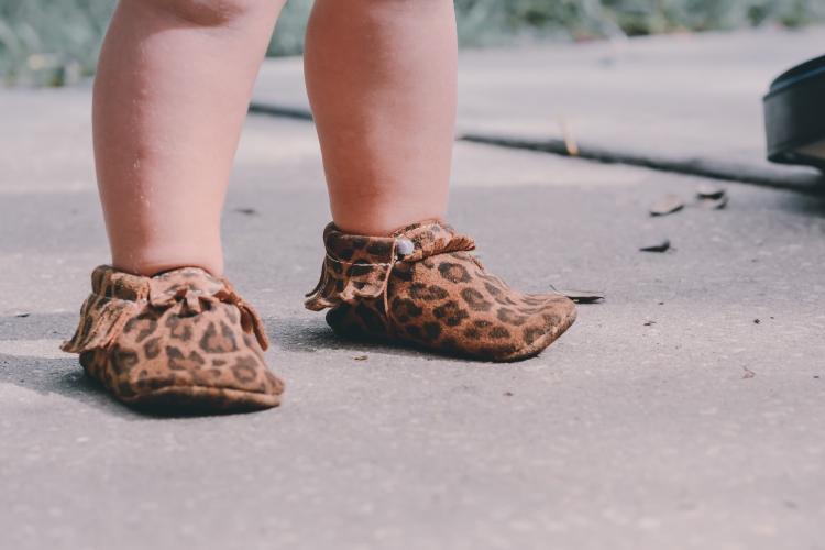 Cheetah20
